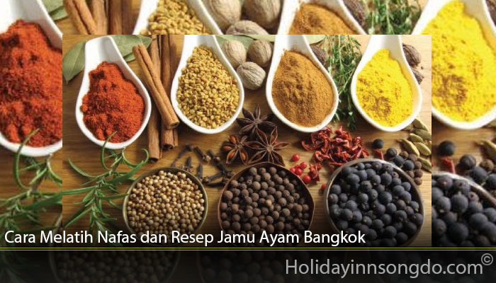 Cara Melatih Nafas dan Resep Jamu Ayam Bangkok